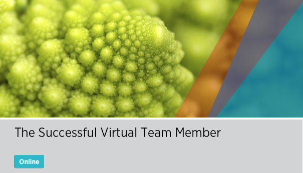 The Successful Virtual Team Member