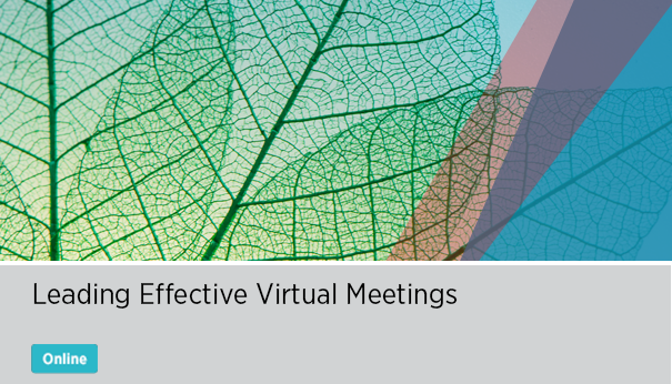 Leading Effective Virtual Meetings